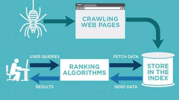 Google search hoạt động như thế nào